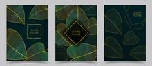 Vector Illustration. Luxury Gold Leaves. Dark Green Background Color. Nature Floral Pattern. Golden Plant. Plant Line Art. Design For Cover, Poster, Brochure, Magazine, Postcard, Flyer, Wallpapers