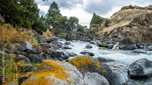 Canvas Print Stream from Mammoth to Gardener Montana in Yellowstone National Park