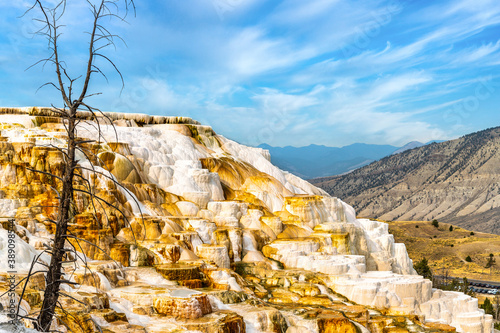 Photo Canary springs at Mammoth Hot Springs