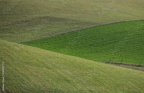 Fotografering prairies verdoyantes en montagne