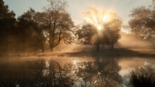 Sunbeams And Reflections On A Foggy Dawn In Golden Light