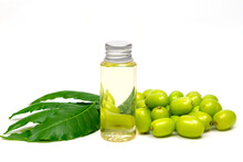 Neem Oil In Bottle And Neem Leaf And Fruit Isolated On White Background. Neem Oil Is An Excellent Moisturizing Oil And Contains Various Compounds That Have Insecticidal And Medicinal Properties.
