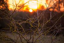 Beautiful Autumn Sunset In The UK