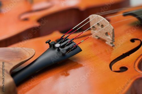 Fotografia Close up violin bridge