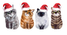 Cute Watercolor Cats Set. Merry Christmas! New Year Postcard