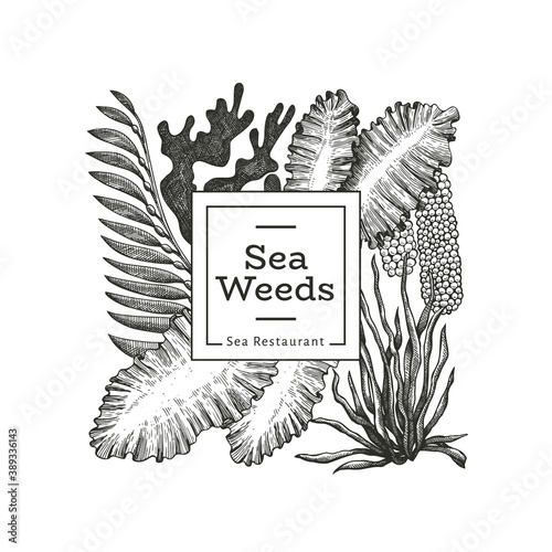 Fototapeta Seaweed design template