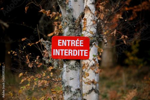 Fotografia Entrée Interdite - Panneau d'interdiction d'entrée dans une forêt