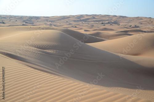 Landscape of desert sand dunes under the sunlight - perfect for wallpapers Billede på lærred