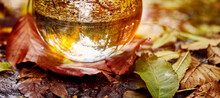Crystal Ball On Colorful Autumn Leaves In Yellow Light With Lens Flare, Autumnal Mood, Christmas Mood