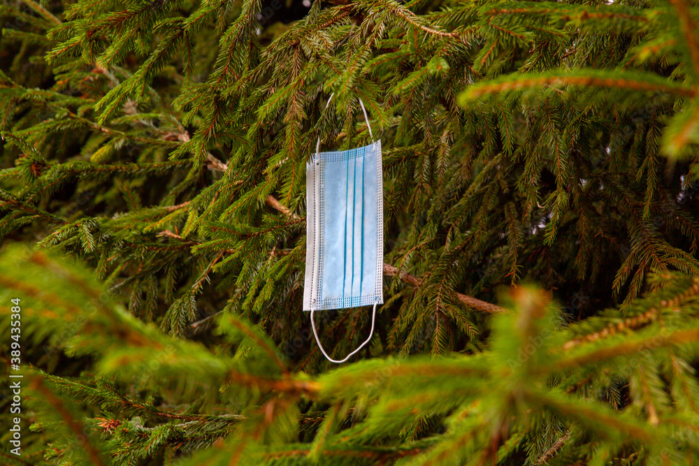 Fototapeta Blue medical face mask hanging lonely on a green Christmas tree. Protection against coronavirus infection covid-19 in the new year 2021