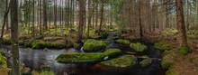 Jezerni Creek In Autumn Color ...