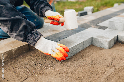 Fototapeta Laying stone tiles outdoors - pavers for footpaths - professional bricklaying