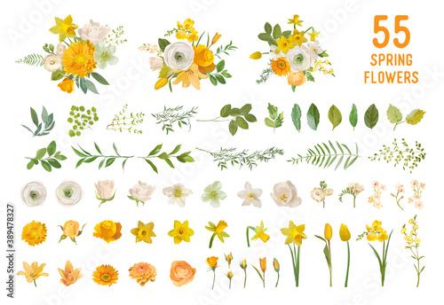 Photo Spring garden flowers, yellow daffodil, mustard rose, white fresia, eucalyptus,