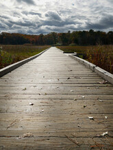 Storm Clouds In The Distance With Boardwalk Crossing Over A Grassy Field Leading To A Forest During Autumn