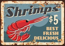 Shrimps Fresh Seafood Rusty Metal Plate. Ocean Or Sea Prams Meat, Vector. Seafood Market Or Shop Retro Banner, Restaurant Shrimp Meals Menu, Snacks With Prams Vintage Price Tag