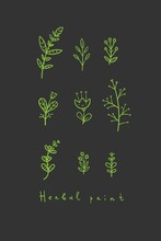 Plants Poster On Dark Background. Set Of Different Herbs And Flowers. Botanical Doodle Postcard.
