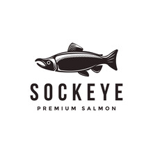 Vintage Sockeye Salmon Fish Logo Icon Vector Template On White Background