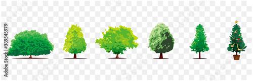Fotografia set of tree icons vector