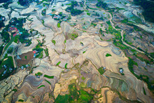 Aerial View Of Rice Terraces In Mountainous Region Of Y Ty, Vietnam