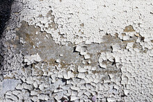 Texture Of Old White Peeling P...