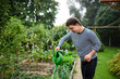 Down syndrome adult man watering plants outdoors in vegetable garden, gardening concept.