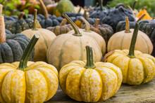Pumpkins For Sale At An Autumn...