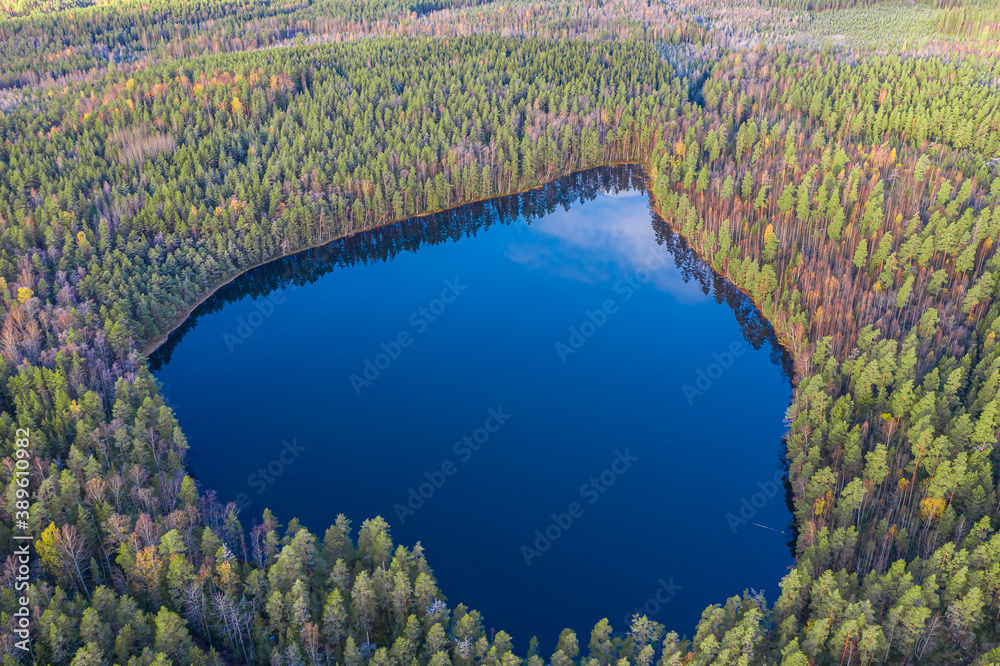 Fototapeta Heart-shaped lake with blue water and green and dense pine forest. Photo from the drone. Finland, lake Niinilampi