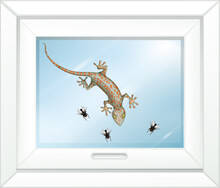 Gecko On Glass Window With Many Fly In Cartoon Style
