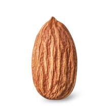 Single Almond Nut