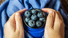 A Group Of Blueberries In A Metal Cup Held By Two Hands.