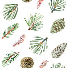 Seamless Pattern With Watercolor Green Pine Branches And Cones For Gift Wrapping Paper On White Background, Christmas Decor, Cards, Wallpaper And Fabric. Botanical Illustration