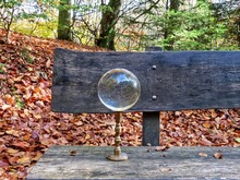 Crystal Ball In Autumn Forest