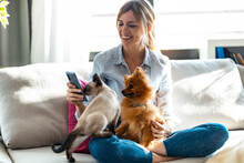 Beautiful Young Woman Playing With Her Cute Dog And Cat While Using Mobile Phone Sitting On Couch In Living Room At Home.