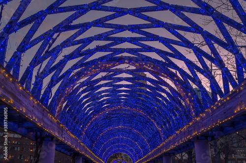 Fotografie, Obraz A trestle covered in a mesh of blue lights