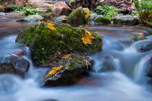 Herbstlicher Wasserfall, Schwa...