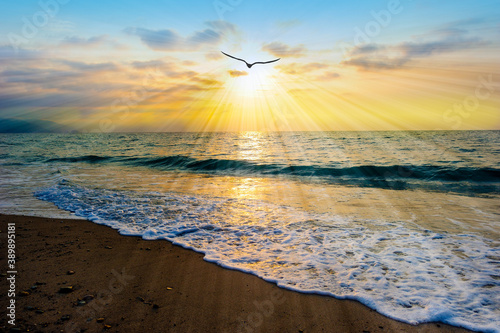 Canvastavla Divine Sunset Ocean Bird