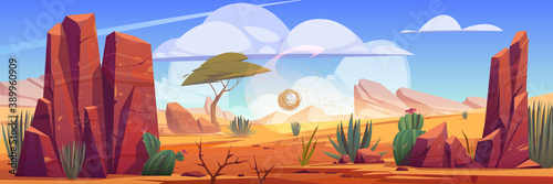 Fototapeta Desert of Africa natural background with tumbleweed rolling along hot dry deserted african nature landscape with yellow sand, green cacti, rocks under blue sky with light clouds cartoon illustration obraz