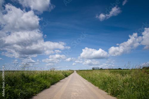 Fototapety, obrazy: une route dans la campagne avec un ciel bleu et de gros nuages blancs.