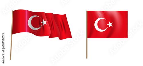Canvas Print colorful naturalistic waving flag of Turkey. Vector Illustration