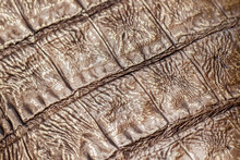 Texture Of Genuine Reptile Leather Close-up, Bronze Khaki Color. Trendy Pattern