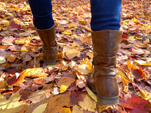 Woman Walking In Autumn Park, ...