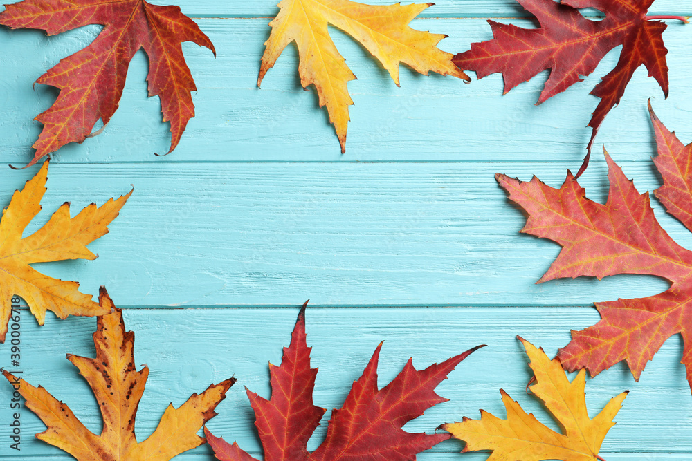 Fototapeta Frame made of autumn leaves on light blue wooden background, flat lay. Space for text