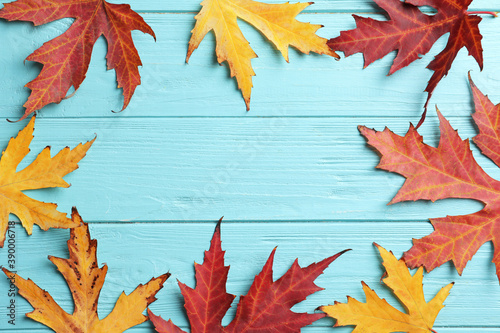 Frame made of autumn leaves on light blue wooden background, flat lay. Space for text