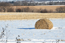 Round Bale In The Snow