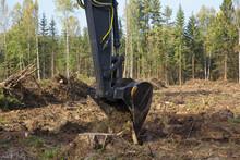The Excavator Uproots The Stum...