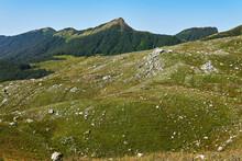 Mountain Pasture On A Rocky Sl...