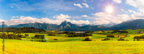 Billede på lærred panoramic landscape in Bavaria with alps mountains and meadow at springtime