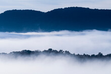 USA, Georgia, Fog And Clouds Above Forest And Blue Ridge Mountains At Sunrise