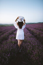 France, Woman In White Dress In Lavender Field