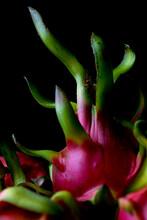 Close Up Of Dragon Fruits